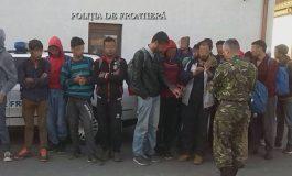 Tot mai mulți emigranți trec frontiera sârbo-română!