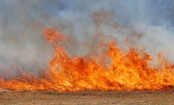 Atenție la cum ardeti resturile vegetale! Zeci de hectare incendiate în județ.
