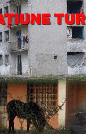 Moldova Nouă în colaps economic şi social!